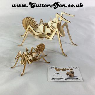 Ant Kit Photo